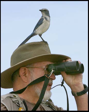 Bird Watching - Beacon Initiative
